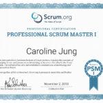 Scrum Zertifikat Scrum Master